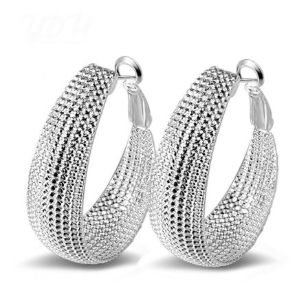 S925 Sterling Silver Explosive Earrings